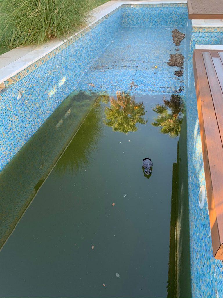 Pool reform, San Roque